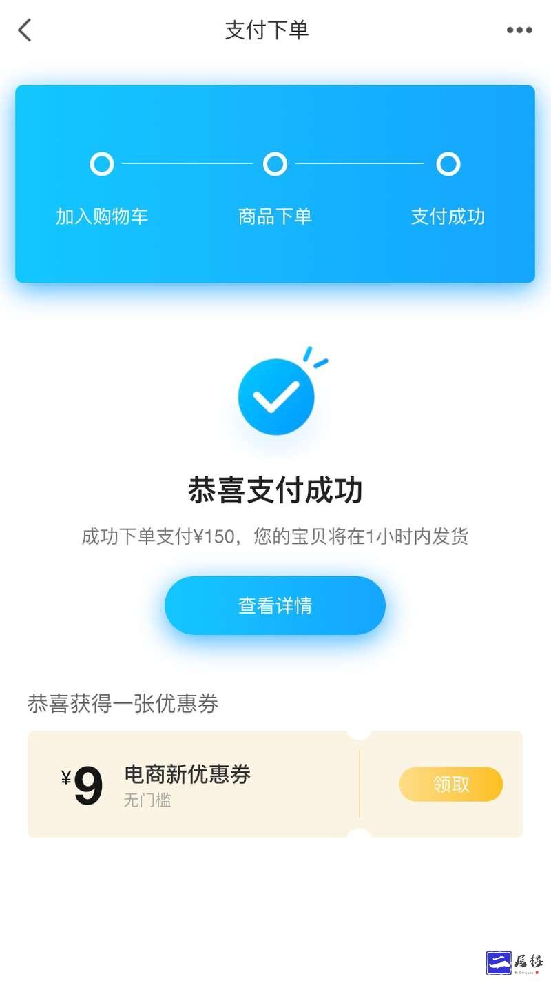 实用的支付下单成功页面模板插图