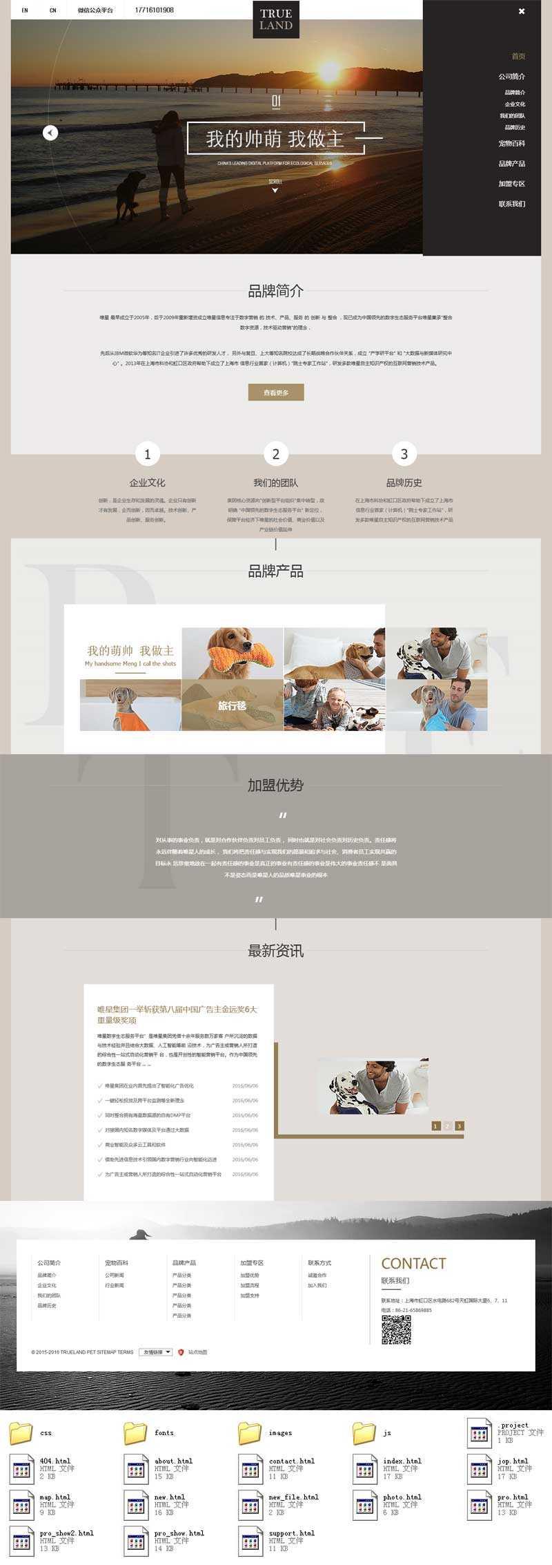 简洁的宠物培训机构网站html5响应式模板
