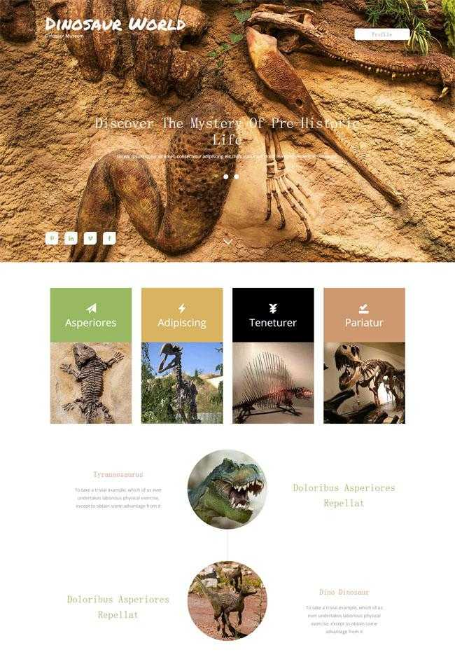 动物标本馆官方网站模板插图