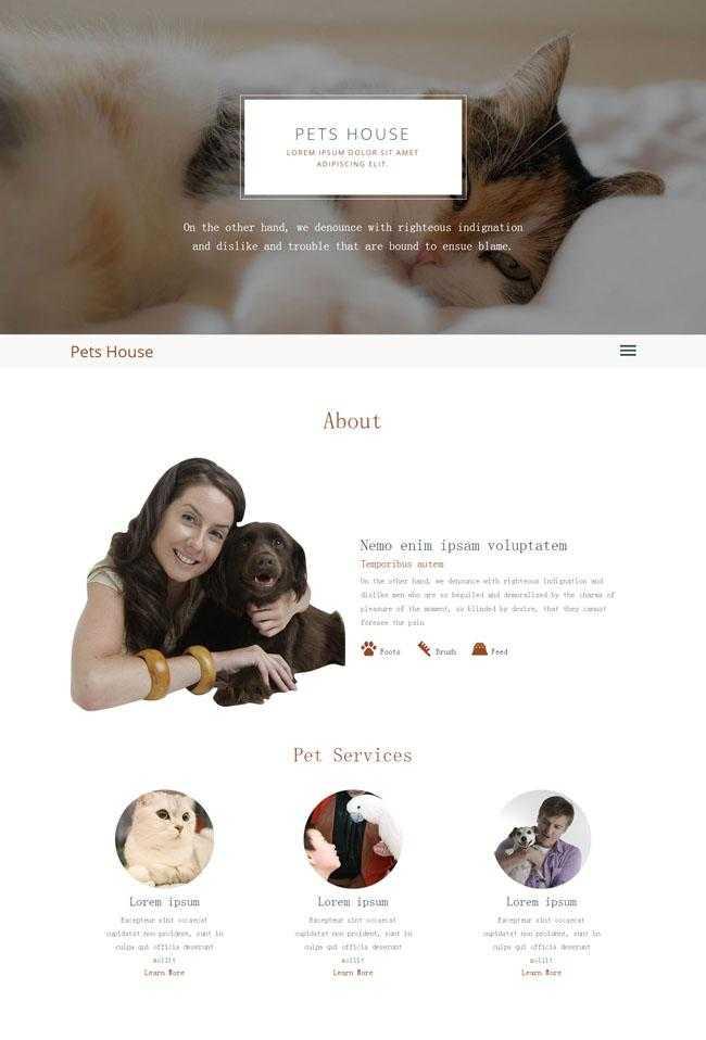 HTML5大气简洁宠物网站模板插图