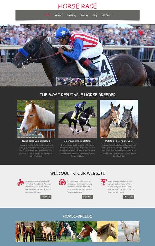 竞技赛马HTML网站模板插图
