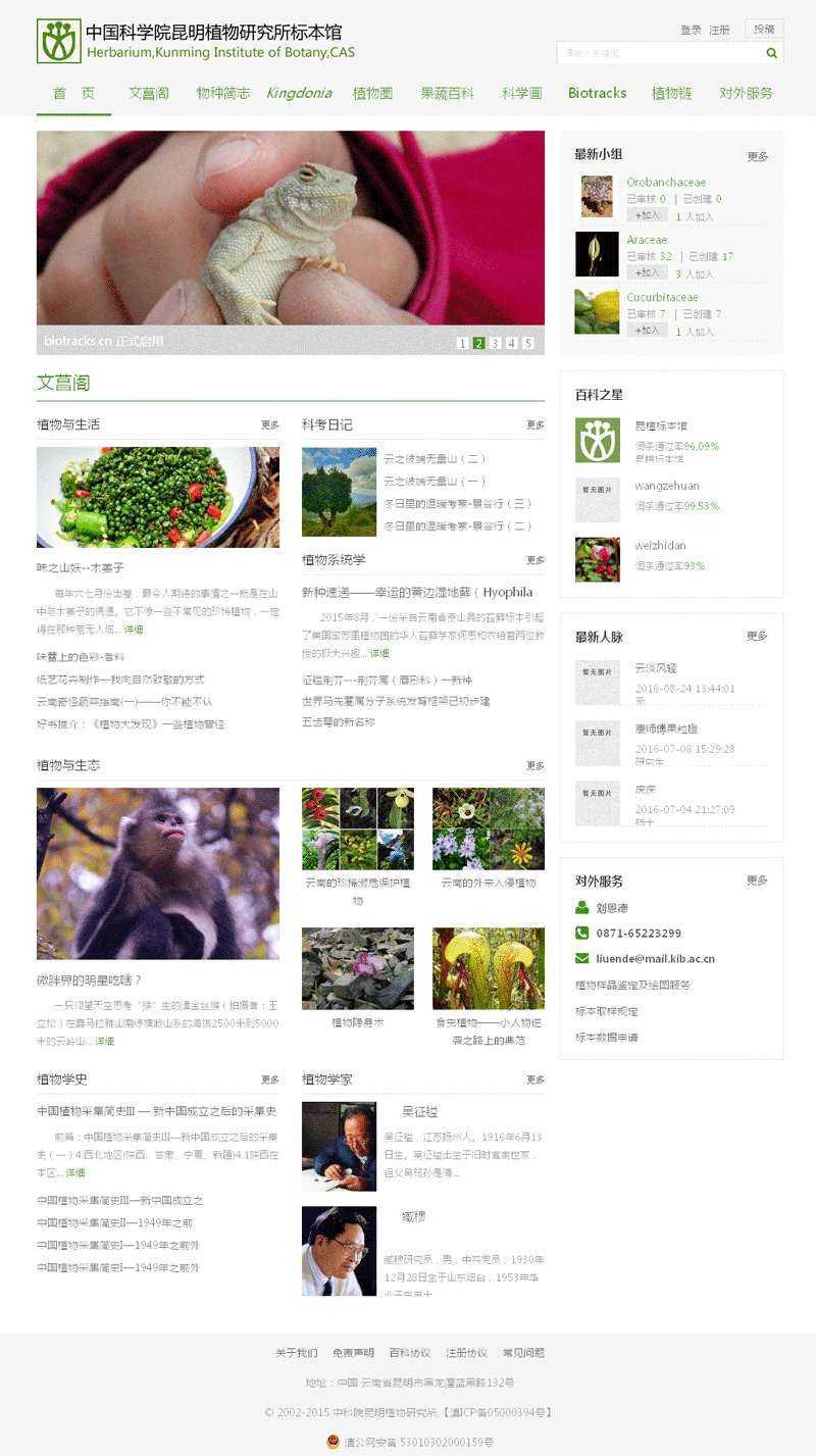 绿色的植物标本网首页模板源码