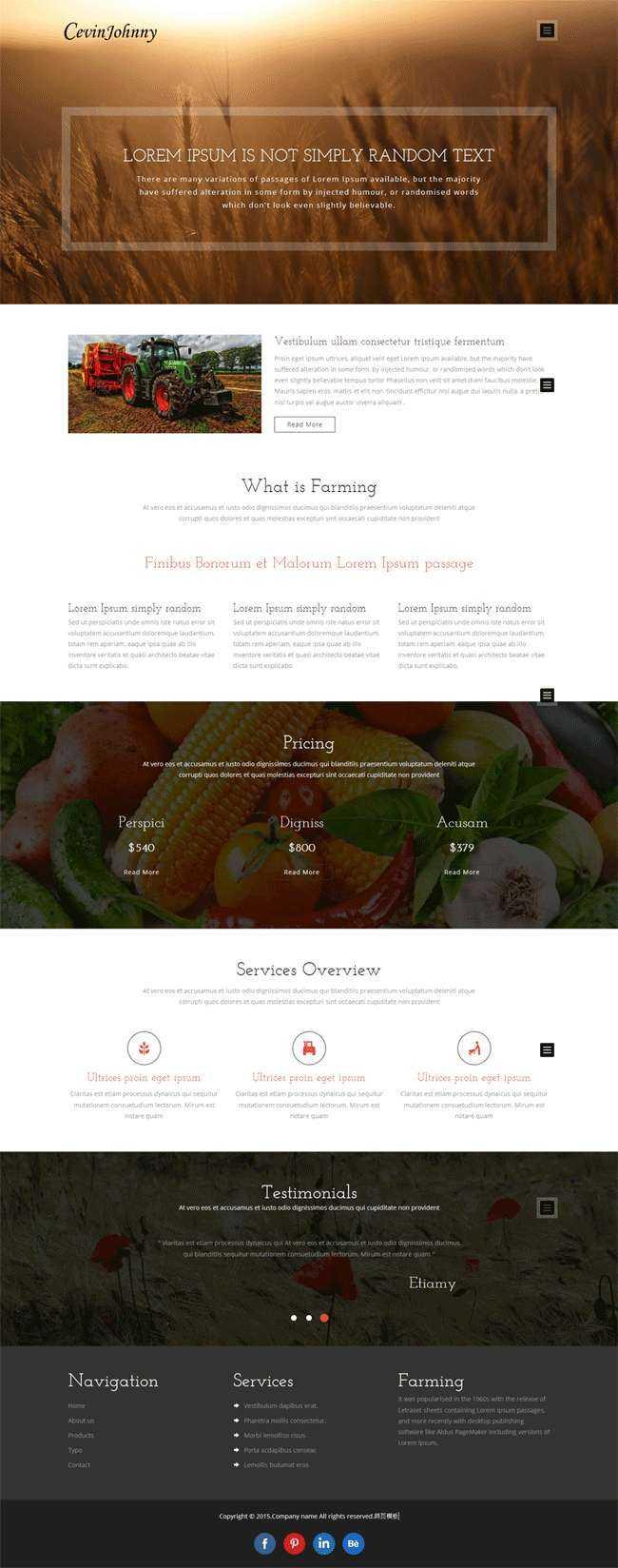 黑色简洁的蔬菜农场博客网站源码